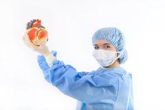 Weiblicher Doktor oder Krankenschwester, die ein Inneres anhalten stockfoto