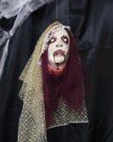 Weiblicher Dracula-Monsterkopf mit blutigen Reißzähnen und dem purpurroten Haar Stockbild