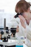 Weiblicher Forscher, der ein Mikroskop verwendet Stockfoto