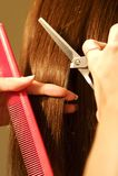 Weiblicher Haarausschnitt an einem Salon stockbilder