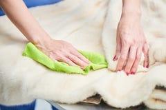 Weiblicher Handabwischenstoff für Pelz Stockfotografie