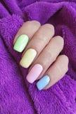 Weiblicher Handmaniküre-Farbpelz Mehrfarben lizenzfreie stockbilder