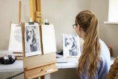 Weiblicher Jugendkünstler Sitting At Easel, das sich vorbereitet, Bild des Hundes von der Fotografie zu zeichnen lizenzfreie stockfotos