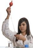 Weiblicher Kursteilnehmer an der Ausbildung in der Chemie Lizenzfreie Stockfotografie