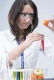 Weiblicher Laborassistent mit den verschiedenen Test-Flaschen, die Experiment im Labor mit Frucht-Exemplaren leiten Stockbilder