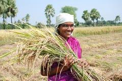 Weiblicher Landwirt stockfotos