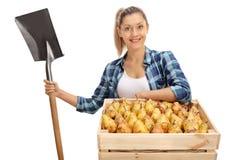 Weiblicher Landwirt, der mit einer Kiste und einer Schaufel aufwirft Lizenzfreies Stockbild