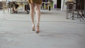 Weiblicher Manager kommt zum Geschäftsteam Mischrassegruppe von personenen-Sitzung im modernen Büro Kamera schiebt von den Beinen Lizenzfreie Stockfotos