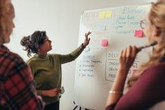 Weiblicher Programmierer, der neues Projekt Mitarbeitern erklärt stockfotografie