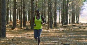 Weiblicher Rüttler, der in den Wald 4k läuft stock video
