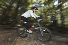 Weiblicher Radfahrer im Wald lizenzfreies stockfoto
