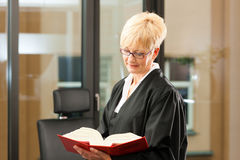 Weiblicher Rechtsanwalt mit Zivilrechtcode Lizenzfreies Stockfoto