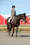 Weiblicher Reiter auf Brown-Pferd im Fall Stockfotos