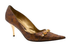 Weiblicher Schuh. Stockfotografie