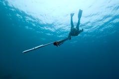 Weiblicher Stangefischer taucht in Richtung zum Projektor Stockfotografie