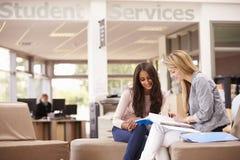 Weiblicher Student Working With Mentor lizenzfreie stockfotografie
