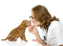 Weiblicher Tierarzt, der ein sharpei Hündchen überprüft Lizenzfreies Stockfoto
