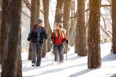 Weiblicher und männlicher Wanderer, der in Wald geht stockbild
