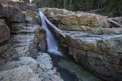 Weiblicher Wanderer, unterer Myra Falls, provinzieller Park Strathcona, Lager Stockfotos