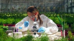 Weiblicher Wissenschaftler arbeitet mit Mikroskop und Chemikalien stock footage