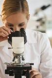 Weiblicher Wissenschaftler mit Mikroskop Stockfotos