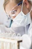 Weiblicher wissenschaftlicher Forscher In Laboratory Lizenzfreies Stockfoto