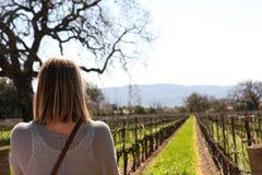 Weibliches Anstarren Weinberg in Kalifornien Stockfoto