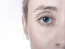Weibliches Auge Lizenzfreie Stockfotografie