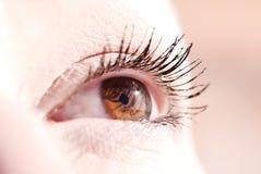 Weibliches Auge Lizenzfreies Stockbild
