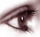 Weibliches Auge lizenzfreies stockfoto