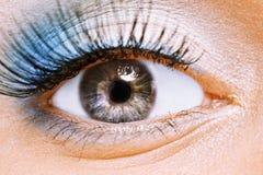 Weibliches Auge der Schönheit mit Blau bilden Stockfoto