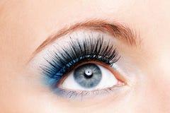 Weibliches Auge der Schönheit mit Blau bilden Lizenzfreie Stockbilder
