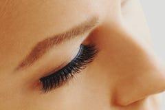 Weibliches Auge mit den extremen langen falschen Wimpern Wimpererweiterungen, -make-up, -kosmetik, -schönheit und -Hautpflege stockbild