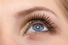 Weibliches Auge mit den langen Wimpern Lizenzfreies Stockfoto