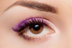 Weibliches Auge mit den langen Wimpern schließen oben lizenzfreie stockfotografie