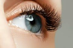 Weibliches Auge mit den langen Wimpern schließen oben Nahaufnahme geschossen von der Frau Lizenzfreies Stockfoto