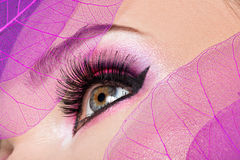Weibliches Auge mit hellem rosa Make-up der schönen Mode Stockbilder