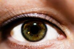 Weibliches Augenmakrofoto Stockfotos