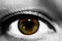 Weibliches Augenmakrofoto Lizenzfreie Stockfotografie