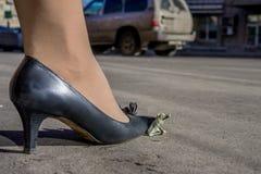 Weibliches Bein auf zerknitterter Dollarbanknote Stockfotografie