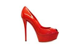 Weibliches footwear-84 Lizenzfreies Stockbild
