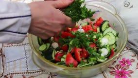 Weibliches Handschnittgemüse für Salat des strengen Vegetariers stock video