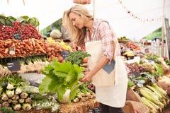 Weibliches Kunden-Einkaufen am Landwirt-Markt-Stall lizenzfreie stockbilder