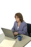 Weibliches Leitprogramm auf Laptop Stockfotografie