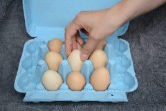 Weibliches Modell, das ein Ei ergreift Lizenzfreies Stockfoto