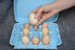 Weibliches Modell, das ein Ei hält Stockbild