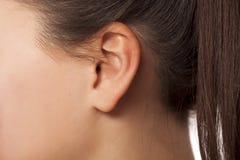 Weibliches Ohr lizenzfreie stockfotos