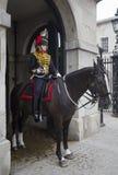 Weibliches Pferden-Abdeckung lizenzfreie stockbilder