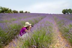 Weibliches Sitzen auf dem Lavendelgebiet, das Fotos in Provence, Fran macht Stockfoto