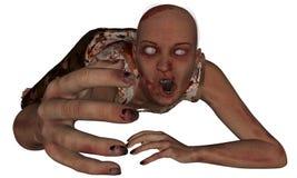 Weibliches Zombie-Erreichen Stockbild